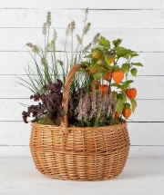 Autumn Plant Basket